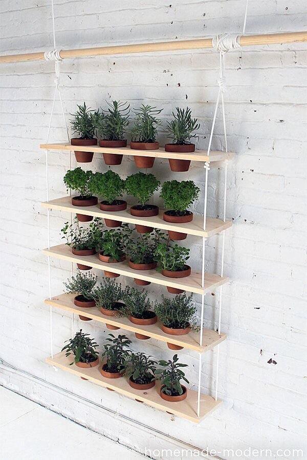 L'étagère de plantes