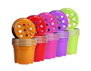 pot rond semis couleur