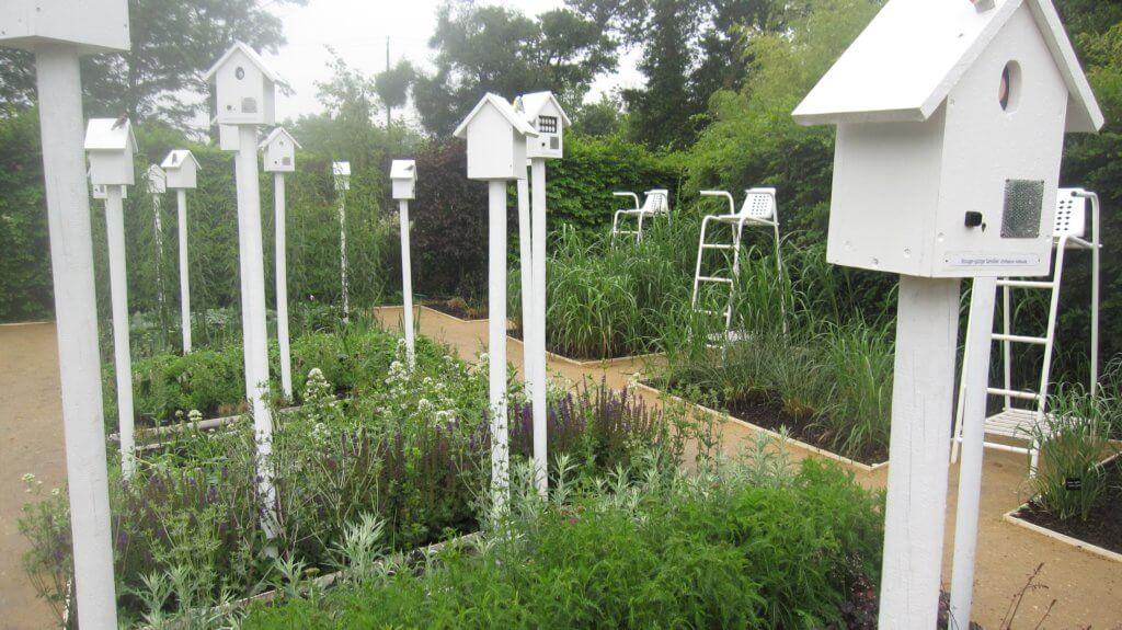insectes au jardin